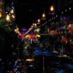 """Desfie Boticário """"Tropical Colors"""".Fotos: Danilo Grimaldi/ FOTOSITE"""